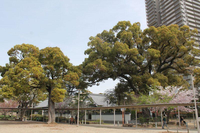 六湛寺公園