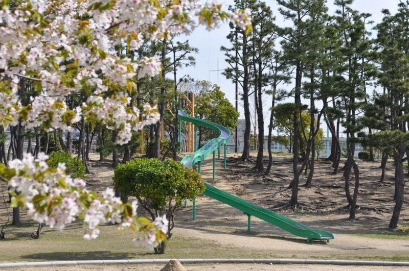 県立甲子園浜海浜公園(今津浜エリア)