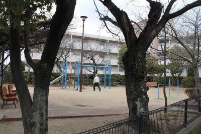 なでしこ公園