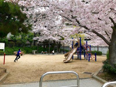 丸橋東公園