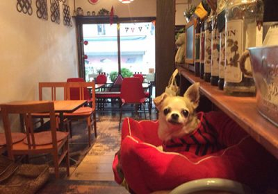 Living Cafe リビングカフェ