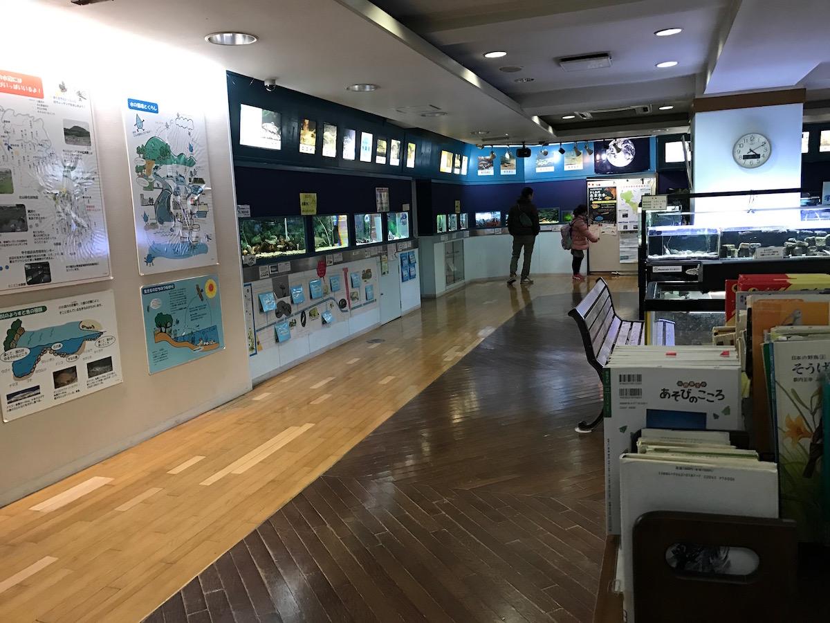 環境学習サポートセンター ミニミニ水族館