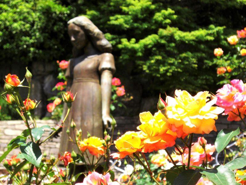 アンネのバラの教会