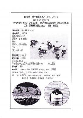 第11回 甲子園浜親子バードウォッチング